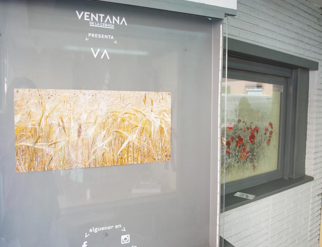 Ventanadelacebada-FERNANDODELCASTILLO_13