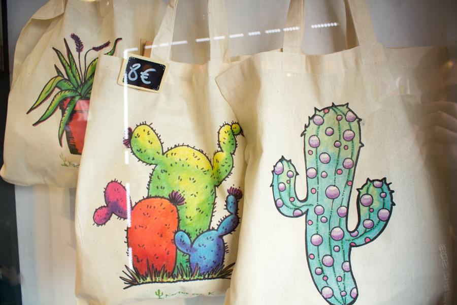 Kactus con k en Ventana de la cebada